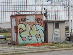 135 (en-ri) Tags: guht gelo clan crew nero verde giallo torino wall muro graffiti writing