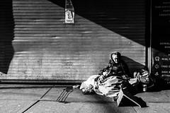 A Beautiful Love Story (Creekside Photog) Tags: love animal dog fur human woman girl street shadow light littledoglaughednoiret
