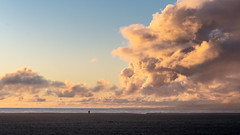(蔡藍迪) Tags: ca california venice venicebeach beach sunset d610 nikon