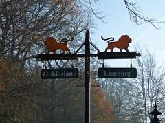 I think I was in Limburg when I took this shot :) (joeke pieters) Tags: 1520070 panasonicdmcfz150 limburg gelderland leeuwen lions