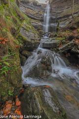 Parque Natural de Gorbeia  2019   #DePaseoConLarri #Flickr-32 (Jose Asensio Larrinaga (Larri) Larri1276) Tags: 2019 orozko bizkaia basquecountry euskalherria parquenaturaldegorbeiagorbea navarra otoño fotografía airelibre saltosdeagua naturaleza