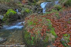 Parque Natural de Gorbeia  2019   #DePaseoConLarri #Flickr-26 (Jose Asensio Larrinaga (Larri) Larri1276) Tags: 2019 orozko bizkaia basquecountry euskalherria parquenaturaldegorbeiagorbea navarra otoño fotografía airelibre saltosdeagua naturaleza