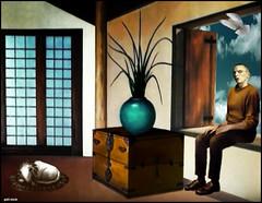 Of happiness (bdira3) Tags: surreal conceptual atmospheric man meditating