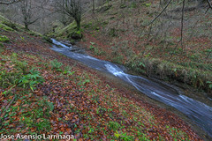 Parque Natural de Gorbeia  2019   #DePaseoConLarri #Flickr-17 (Jose Asensio Larrinaga (Larri) Larri1276) Tags: 2019 orozko bizkaia basquecountry euskalherria parquenaturaldegorbeiagorbea navarra otoño fotografía airelibre saltosdeagua naturaleza