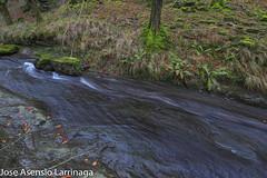 Parque Natural de Gorbeia  2019   #DePaseoConLarri #Flickr-16 (Jose Asensio Larrinaga (Larri) Larri1276) Tags: 2019 orozko bizkaia basquecountry euskalherria parquenaturaldegorbeiagorbea navarra otoño fotografía airelibre saltosdeagua naturaleza