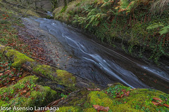 Parque Natural de Gorbeia  2019   #DePaseoConLarri #Flickr-14 (Jose Asensio Larrinaga (Larri) Larri1276) Tags: 2019 orozko bizkaia basquecountry euskalherria parquenaturaldegorbeiagorbea navarra otoño fotografía airelibre saltosdeagua naturaleza