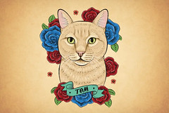 Tom (simang.studio) Tags: animals nature animal pets cute wildlife love pet cats dogs dog photography cat instagram naturephotography photooftheday dogsofinstagram catsofinstagram birds instagood petstagram animallovers art wildlifephotography puppy petsofinstagram animalphotography animalsofinstagram bhfyp