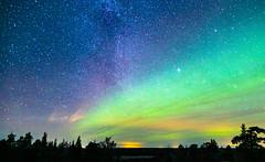 IMG_8265-3 (xmascarol) Tags: northernlight aurora finland night photography starry milkyway rovaniemi nature