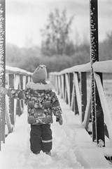 Holding On (rATRIJS) Tags: canon135mmf35ltm 135mm ltm canon model7 canonmodel7 ilfordhp5plus ilfordhp5 hp5 hp5plus ilford expiredfilm l39 m39 rangefinder standdevelopment rodinal compardr09 analog 35mm bw blackandwhite winter latvia latvija cold snow