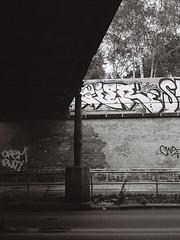 Yorckstraße Graffiti | Berlin (eddbeast) Tags: blackandwhite berlin graffiti blackwhite street travel urban bw streetart art monochrome station shadows mju streetphotography olympus trainstation graff sbahn urbanphotography travelphotography pointandshoot illford mjuii pointshoot xp200