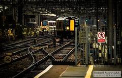 CreweRailStation2019.11.28-4 (Robert Mann MA Photography) Tags: crewerailstation cheshire train trains railway railways station stations 2019 autumn 28thnovember2019 transpennineexpress class397 civity virgintrains class390 pendolino class221 supervoyager londonnorthwesternrailway class350 desiro transportforwales tfwrail walesandborders class175 coradia class153 supersprinter
