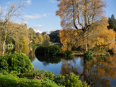The colours of Autumn (ORIONSM) Tags: stourhead autumn water lake landscape reflection trees golden leaves fall bridge nationaltrust olympus omdem1 olympus14150mm
