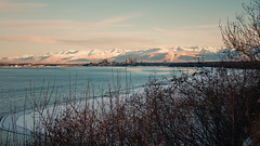 338/365 Anchorage (OhWowMan) Tags: ohwowman nikon nikor d3300 acdseepro9 my2019challenge 365project animageaday dailyphotography 365the2019edition 3652019 day338365 04dec19 alaska anchorage outside outdoors outandabout outdoor ocean onlyinalaska landscape mountains scenic scenery snow snowcapped winter cookinlet