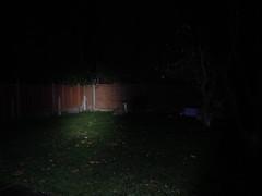 Owlet single LED - High (900lumen) (STW stumpy01) Tags: owlet single led high 900 lumen pr1600 bike light