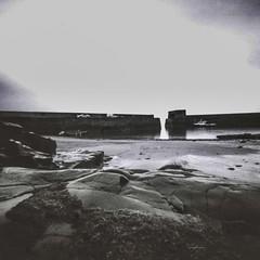 Craster Harbour II (John Ash Photography) Tags: pinhole square black whiteblack white film ilford pan f panf zeroimage