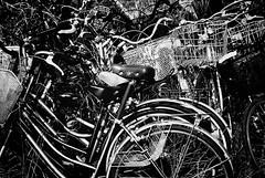 *** (Hitoshi Matsumoto) Tags: monochrome blackandwhite bw bicycle lightandshadow street streetphotography abstract osaka japan