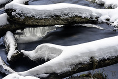 Closeup of ice formations under a fallen tree at Willow Falls at Willow River State Park in Hudson, Wisconsin (Lorie Shaull) Tags: discoverwisconsin wisconsin willowfalls waterfall winter snow ice willowriverstatepark hudson stcroixcounty