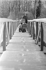 Long Road Ahead (rATRIJS) Tags: canon135mmf35ltm 135mm ltm canon model7 canonmodel7 ilfordhp5plus ilfordhp5 hp5 hp5plus ilford expiredfilm l39 m39 rangefinder standdevelopment rodinal compardr09 analog 35mm bw blackandwhite winter latvia latvija cold snow