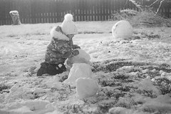 Destruction (rATRIJS) Tags: canon50mmf18ltm 50mm ltm canon model7 canonmodel7 ilfordhp5plus ilfordhp5 hp5 hp5plus ilford expiredfilm l39 m39 rangefinder standdevelopment rodinal compardr09 analog 35mm bw blackandwhite winter latvia latvija cold snow