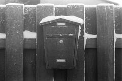 Atvari (rATRIJS) Tags: canon50mmf18ltm 50mm ltm canon model7 canonmodel7 ilfordhp5plus ilfordhp5 hp5 hp5plus ilford expiredfilm l39 m39 rangefinder standdevelopment rodinal compardr09 analog 35mm bw blackandwhite winter latvia latvija cold snow