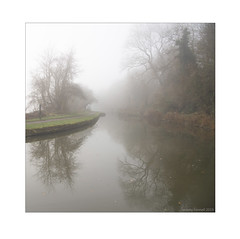 Avoncliff on a foggy afternoon (zolaczakl) Tags: avoncliff canal kennetavoncanal thekennetavoncanal reflections autumncolour fog foggy mist trees 2019 nikond800 nikonafsnikkor24120mmf4gedvrlens uk england photographybyjeremyfennell wiltshire jeremyfennellphotography towpath