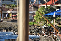 RonRitaI5 (ONE/MILLION) Tags: vacation travel bigisland hawaii hilton hotel tram ride boats flags transportation birds trees ocean beach dolphin fish bridge ronstanley ritastanley cindysiebertkelly ron rita cindy williestark onemillion turtles honu kona ontherocks bar grill raysonthebay palms