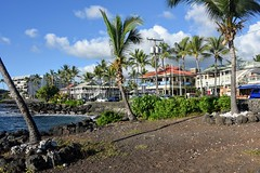 RonRitaI (ONE/MILLION) Tags: vacation travel bigisland hawaii hilton hotel tram ride boats flags transportation birds trees ocean beach dolphin fish bridge ronstanley ritastanley cindysiebertkelly ron rita cindy williestark onemillion turtles honu kona ontherocks bar grill raysonthebay palms