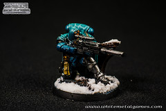 Wyverns Eliminators 0510-03 (whitemetalgames.com) Tags: 40k adeptus astartes space marines wyverns chapter custom alpha legion successor reptile snow basing ice lake river cracked whitemetalgames warhammer40k warhammer warhammer40000 wh40k paintingwarhammer gamesworkshop games workshop citadel wmg white metal painting painted paint commission commissions service services svc raleigh knightdale northcarolina north carolina nc hobby hobbyist hobbies mini miniature minis miniatures tabletop rpg roleplayinggame rng warmongers wargamer warmonger wargamers tabletopwargaming tabletoprpg slaanesh keeper secrets greater daemon daemons chaos pleasure magnetized aos