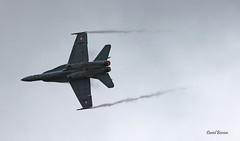 MDD F18C-49-MC Hornet ~ J-5015  Swiss AF (Aero.passion DBC-1) Tags: 2017 meeting st dizier aeropassion avion aircraft aviation plane airshow dbc1 david biscove mdd f18 hornet ~ j5015 swiss af
