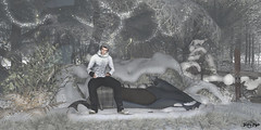 #152 - White and Cold Winter (Yvain Vayandar) Tags: dubai treschic event secondlife sl decoration roleplay winter fantasy forest snow cold tmcreation lunaria happymood mgmen´s noche modulus valekoer