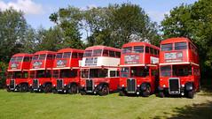 Photo of London Transport RT's - North Weald