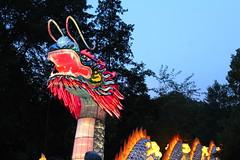 Asian Lantern Festival (FitchDnld) Tags: asianlanternfestivalclevelandmetroparkszooaugust42019 cleveland clevelandohio clevelandmetroparkszoo clevelandzoo clevelandmetroparks metrroparks zoo ohio ohiozoo art asian asianlanternfestival lantern festival
