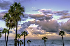 O'Side After Storm 8-11-29-19-60D (rod1691) Tags: california united states nature beauty usa tropical paradise sunrise palm trees outdoor landscape seascape walkabout sunset photography travel beach sand sun pier strand canon40506070d5dii walknshoot