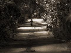 à moi l'enfance! (photosgabrielle) Tags: photosgabrielle montreal sepia monochrome urban city ville child enfant people urbain alley ruelle streetphotography