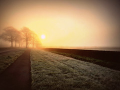 And Now Dawn (Ian Campsall) Tags: sunrise oxfordshire samsungs9 fog england englishcountryside