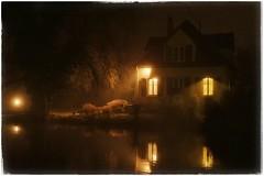 Foggy night (r0llsky) Tags: fog night nightphotography nightphotographyshots brouillard erstein gold reflection reflets highiso