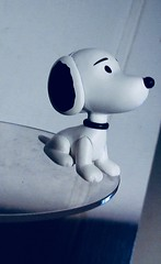 Young Snoopy Beagle Dog Peanuts 1380 (Brechtbug) Tags: charlie brown snoopy medicom sunday funnies news paper comic strip characters action figures peanuts schultz charles film movie dog beagle pet dogs joe cool universe nyc 2019 toys toy blue red new york city animation christmas tv special halloween thanksgiving good old ole young