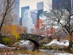 When Worlds Collide (robert_golub) Tags: nyc newyorkcity bridge centralpark manhattan gapstowbridge snow fall