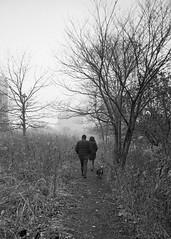 Winter Walk (Tim Roper) Tags: chicago leica film hc110 hp5 park rain blackandwhite elmarit 28mm ilford