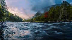 I am the first (JPLapointe) Tags: forest valleedelajaquescartier montagnes riviere river chevreuil tourismequebec photo photographephie viesauvage brume rivière forêt lac montagne jplphotostudio nikon nikondslr nikond9810 ngc
