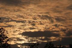 2019-102501 (bubbahop) Tags: 2019 africatrip southafrica part3 gadventures safari kruger national park sunrise