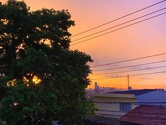 Hoje, da janela de casa... (Ruby Augusto) Tags: rain chuva sunset pôrdosol tree árvore roofs