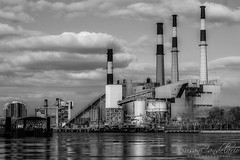 Ravenswood Generating Station  BW (Susan Candelario) Tags: america clouds eastriver industrial infrastructure lic longislandcity ny nyc newyork newyorkcity northamerica old queens ravenswoodgeneratingstation usa unitedstates afternoon architectural architecture blue business chimneysmoke chimneys city day electric electricity electricitysupply exterior industry landmark plant powerplant powerstation red river sky smoke smokestack smokestacks sunny susancandlerio tower urban urbanlandscape water white