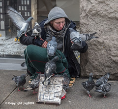 Homeless with Pigeons on Fifth Avenue, Midtown Manhattan, New York City (jag9889) Tags: 2019 20191204 5thavenue fifthavenue help homeless manhattan midtown ny nyc newyork newyorkcity outdoor people pigeons sign streetscape usa unitedstates unitedstatesofamerica jag9889