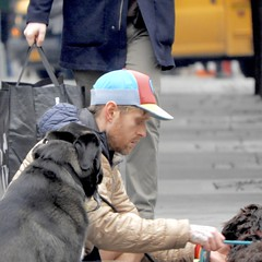 DSCN8053 (danimaniacs) Tags: newyork dog animal man guy hat cap beard scruff walker street