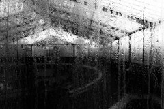 outside looking in (Francis Mansell) Tags: glass water condensation droplet glasshouse greenhouse kew kewgardens royalbotanicgardenskew monochrome blackwhite niksilverefexpro2 building architecture explore explored window dirty