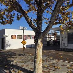 Escondido (Craw Modern) Tags: escondido california square iphone6s phonephoto ©allrightsreserved