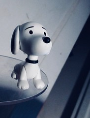 Young Snoopy Beagle Dog Peanuts 1376 (Brechtbug) Tags: charlie brown snoopy medicom sunday funnies news paper comic strip characters action figures peanuts schultz charles film movie dog beagle pet dogs joe cool universe nyc 2019 toys toy blue red new york city animation christmas tv special halloween thanksgiving good old ole young