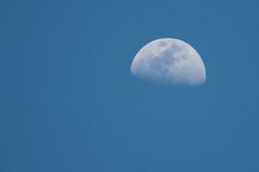 05-12-2019 (RICARDO SILVA 61) Tags: moon lua azul blue