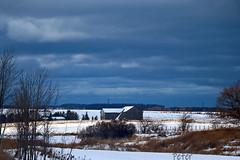Sunburst   IMG_3285ew (juststopandlook) Tags: cloud sunshine rural barn snow